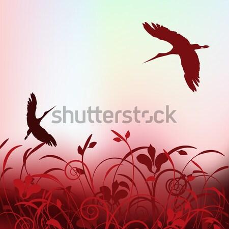 Gyönyörű repülés tavasz égbolt virág fa Stock fotó © mcherevan