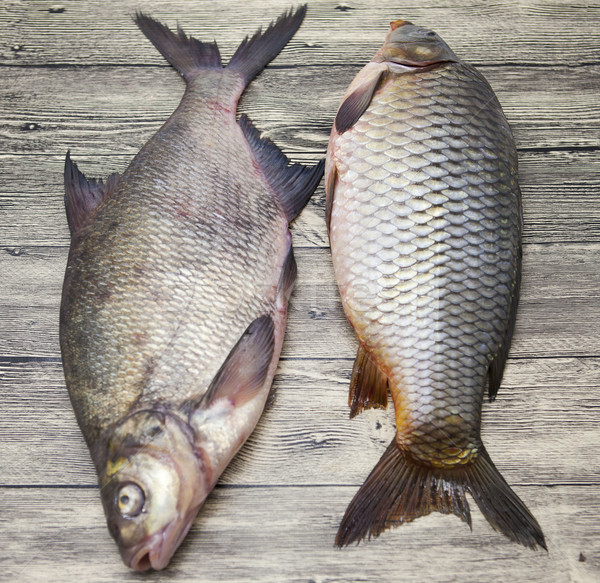 Two large fresh carp live fish lying on a wooden board  Stock photo © mcherevan