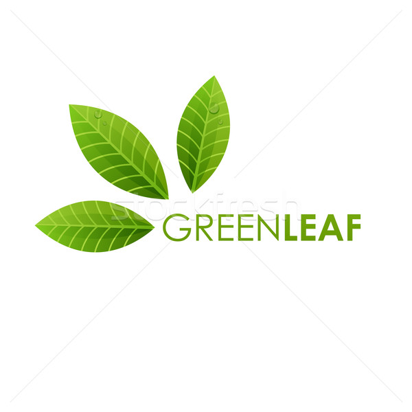 Ecology logo sign , green leaf design, growth leaves vector illustration. Stock photo © mcherevan