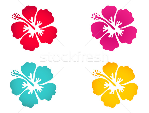 Hibiscus flower set - surfing and tropical symbol Stock photo © mcherevan