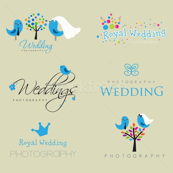 Stok fotoğraf: Bağbozumu · logo · toplama · düğün · fotoğrafçı