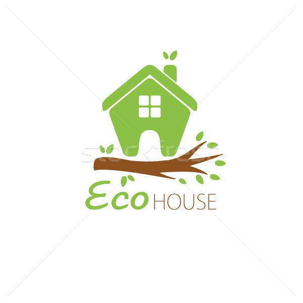 ecological house icon Stock photo © mcherevan