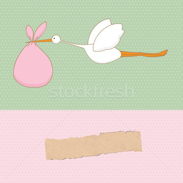 Baby arrival card with stork that brings a cute girl Stock photo © mcherevan