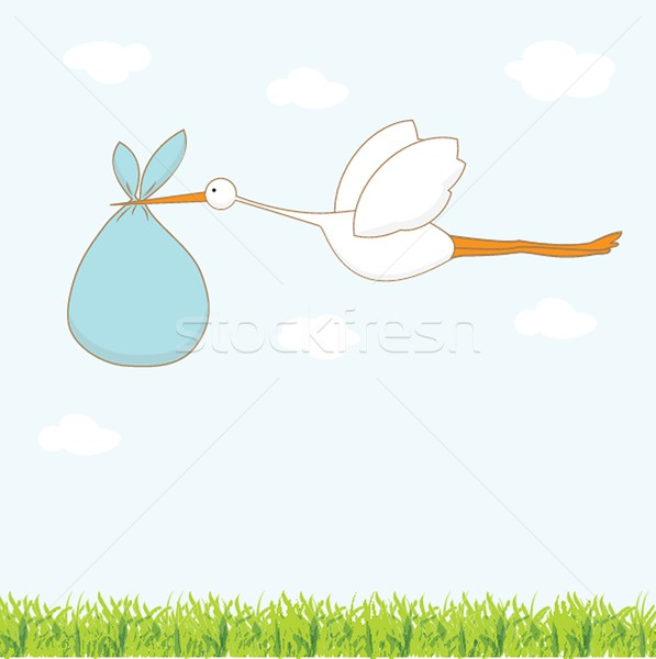 Baby arrival card with stork that brings a cute boy Stock photo © mcherevan