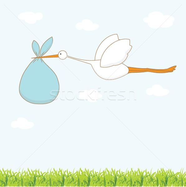 Baby aankomst kaart ooievaar cute jongen Stockfoto © mcherevan