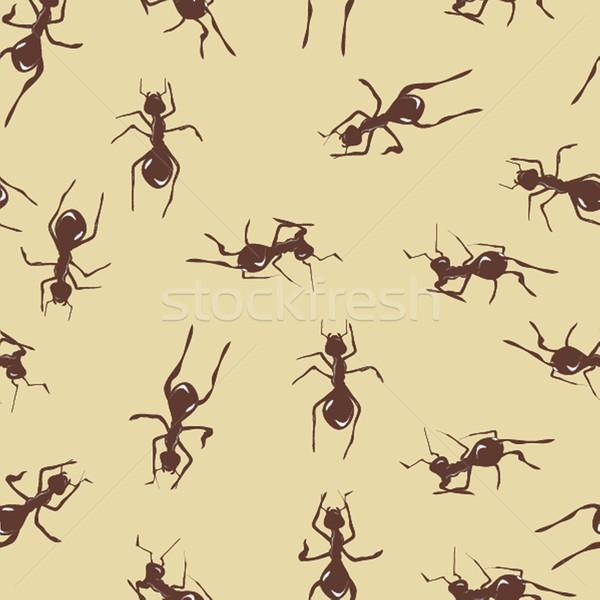 Cute molti rosolare formiche texture Foto d'archivio © mcherevan