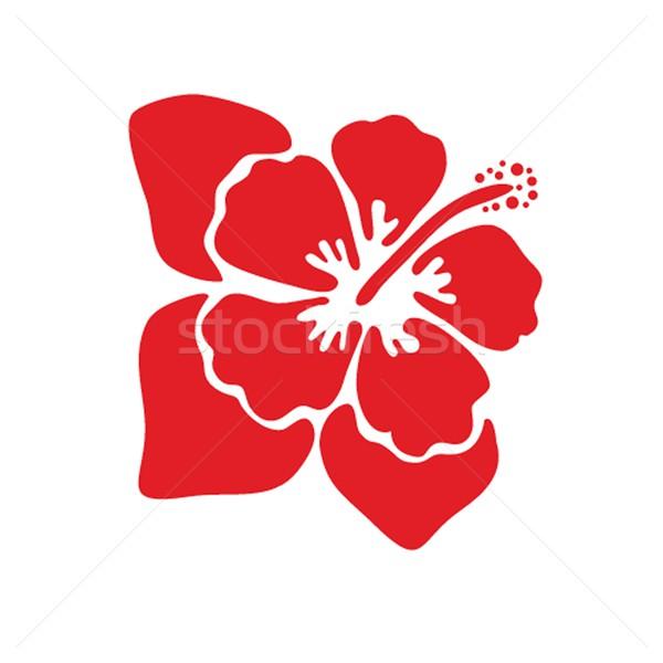 Stok fotoğraf: Ebegümeci · çiçek · yaprak · okyanus · imzalamak · yeşil