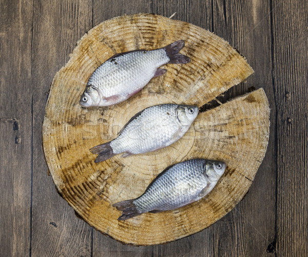 Stock photo: Fresh raw fish carp caught lying on a wooden stump. Live fish crucian Carassius auratus gibelio.