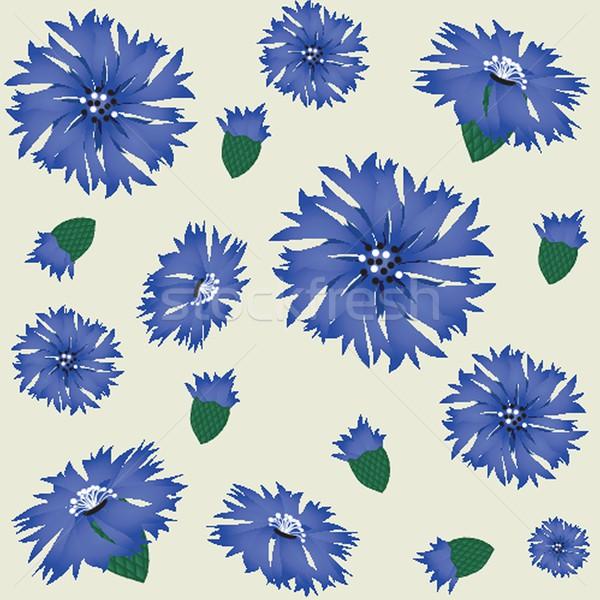 синий василек лист краской фон Сток-фото © mcherevan