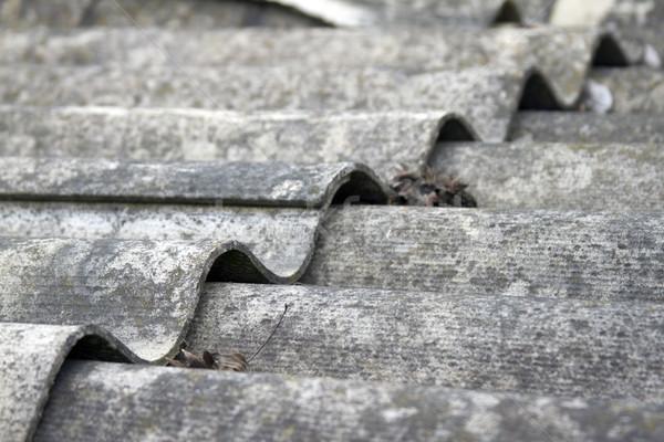 Dak oude huis gedekt grijs tegels huis Stockfoto © mcherevan