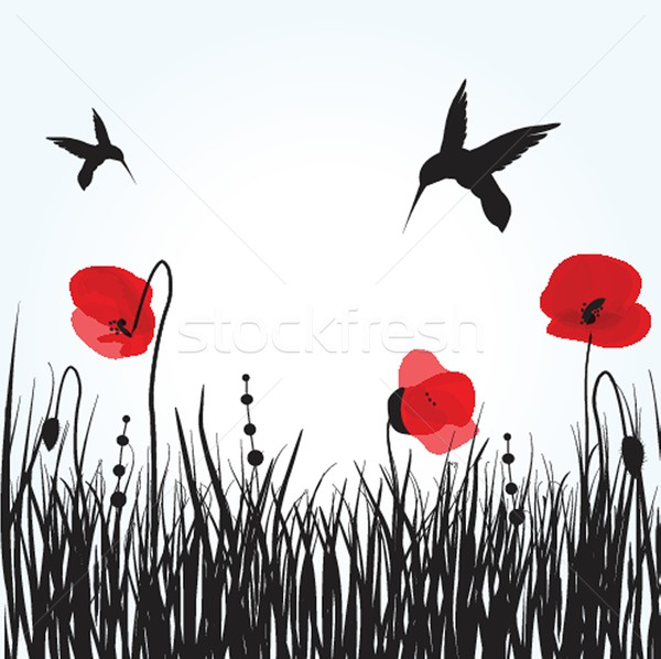 Spring card with beauty poppies. Stock photo © mcherevan