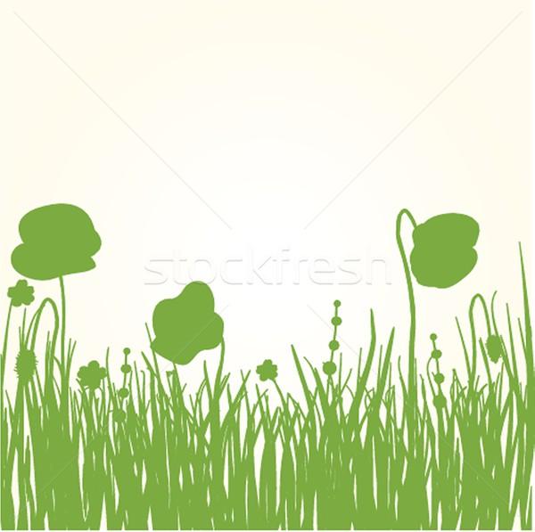 весны карт красоту дизайна лист Сток-фото © mcherevan
