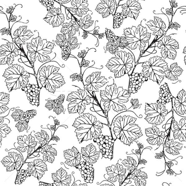 Foto stock: Uva · textura · vinho · fruto · beleza