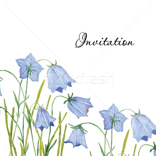 Bluebell flowers. Greeting or invitation vector card.  Hand drawn aquarel illustration. Stock photo © mcherevan