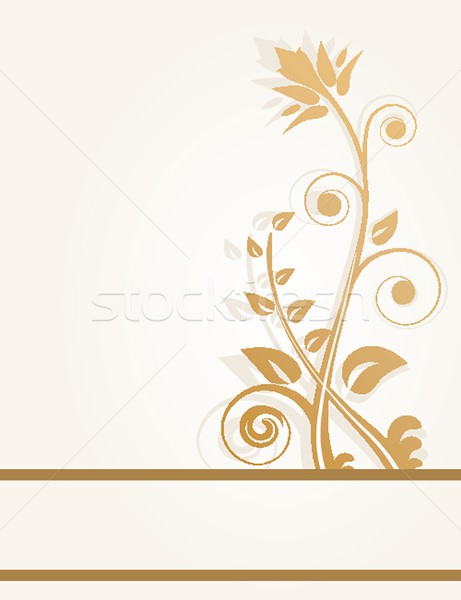 Vintage vector frame on floral background Stock photo © mcherevan