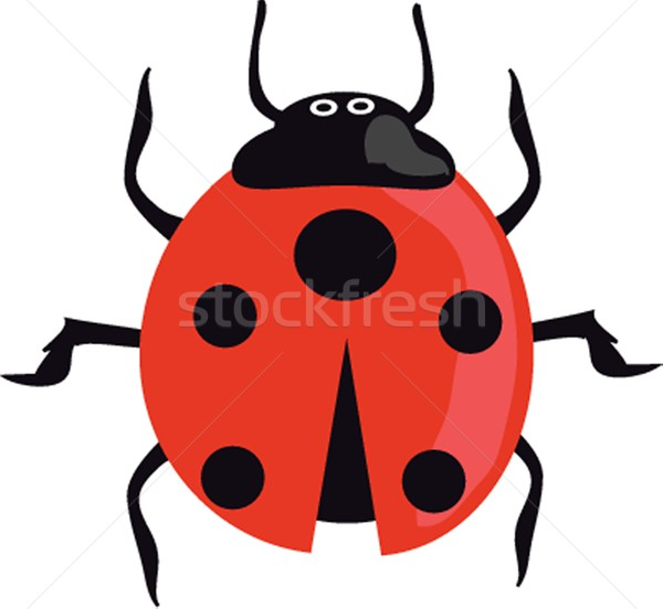 Ladybird on the green grass. Stock photo © mcherevan