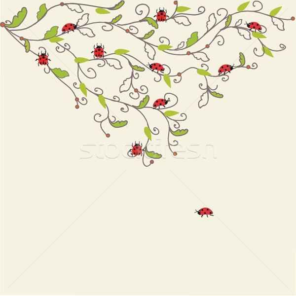 Photo stock: Coccinelle · herbe · verte · printemps · herbe · design · jardin