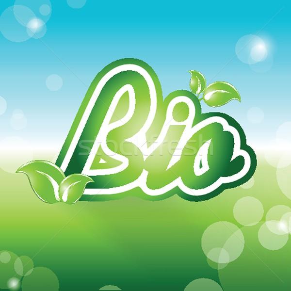 Bio vector ecológico símbolo diseno naturaleza Foto stock © mcherevan