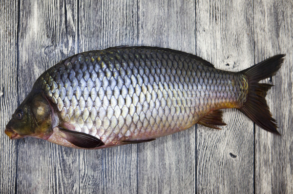 A large fresh carp live fish lying on a wooden board  Stock photo © mcherevan