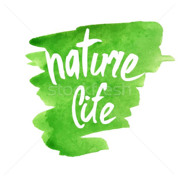 Natureza vida moderno escove caligrafia Foto stock © mcherevan