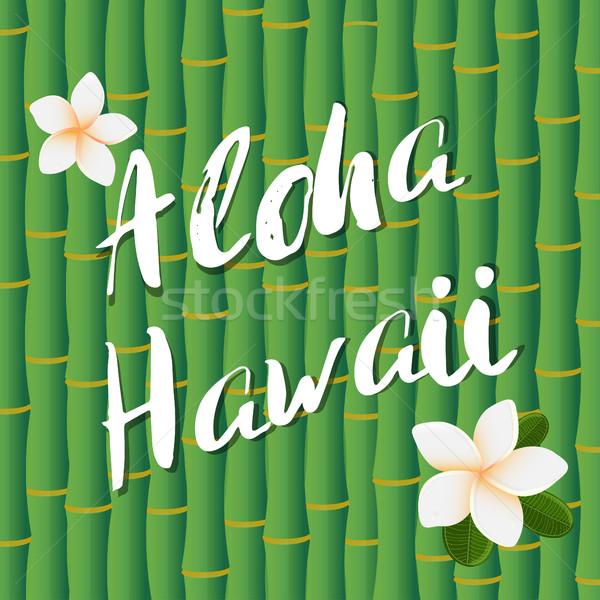Vektor terv aloha Hawaii ecset szöveg Stock fotó © mcherevan