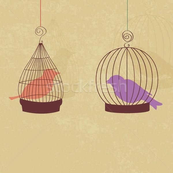Klasszikus kártya kettő aranyos madarak retro Stock fotó © mcherevan