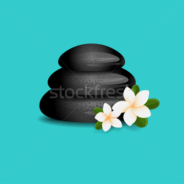 Vector illustration of white  Frangipani flowers with green leaves and black spa massage stones on b Stock photo © mcherevan