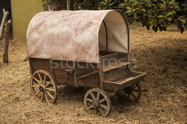 Traditional old American wagon with a roof. Stock photo © mcherevan