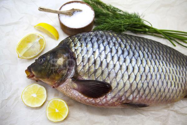 Groot vers karper live vis papier Stockfoto © mcherevan