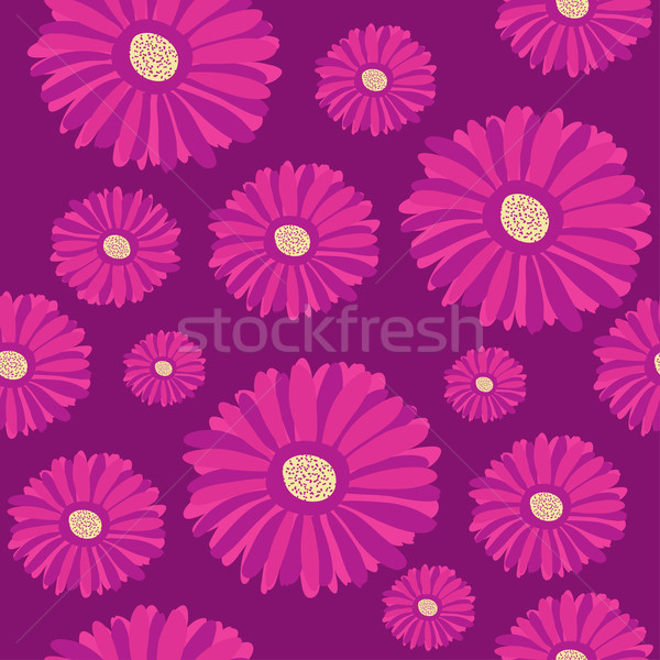 Stock photo: Seamless pattern with purple gerbera flowers on dark background.
