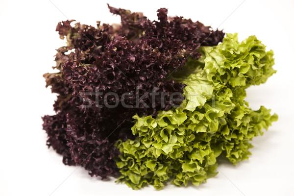 Stock fotó: Zöld · friss · köteg · saláta · fehér · legjobb