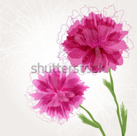 Aquarela pintado vetor hibisco flor tropical violeta Foto stock © mcherevan