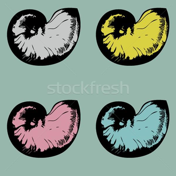Vector nautilus Stock photo © mcherevan