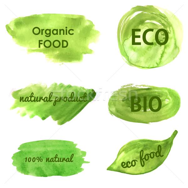 экологический природы Баннеры зеленый здоровое питание органический Сток-фото © mcherevan