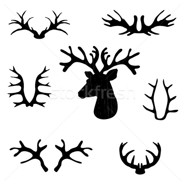 Set of black deer antlers on white backrtoun Stock photo © mcherevan