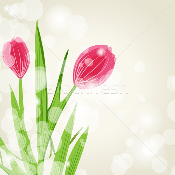 декоративный тюльпаны цветы Tulip вектора цветок Сток-фото © mcherevan
