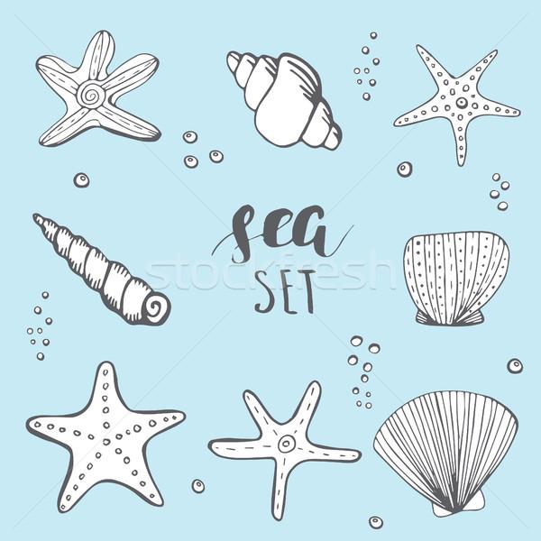 海 シェル 手描き 要素 シェル 星 ストックフォト © mcherevan