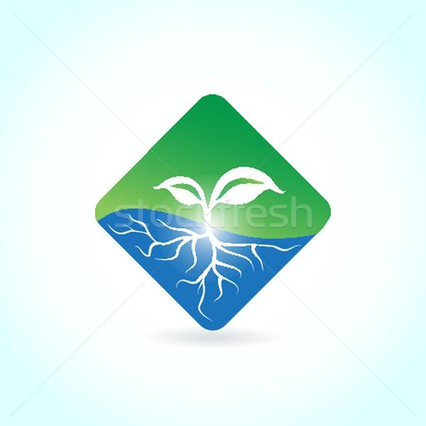 зеленый экологический баннер зеленые листья бизнеса природы Сток-фото © mcherevan