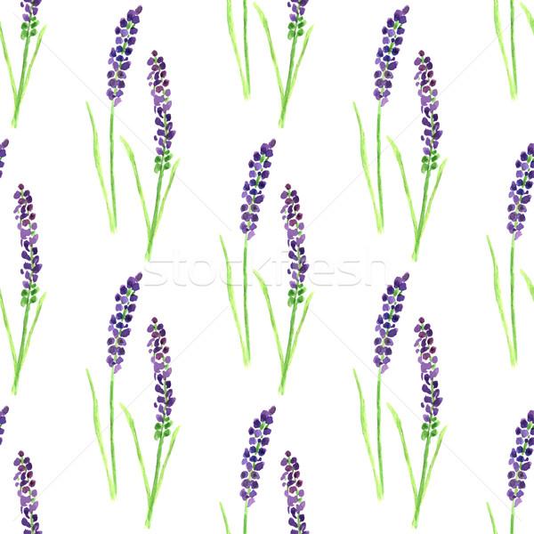 эстетизм лаванда лаванда фиолетовый цветы PNG