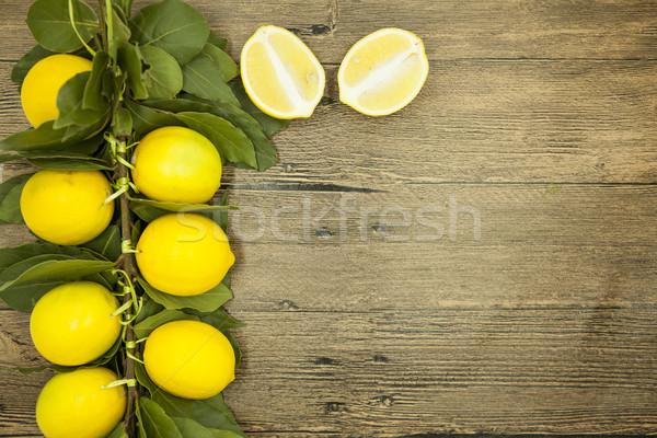 ág friss lédús citromok fából készült természet Stock fotó © mcherevan