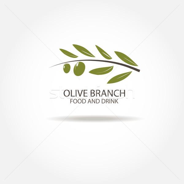 Oliva ramo design de logotipo vetor modelo agricultura Foto stock © mcherevan