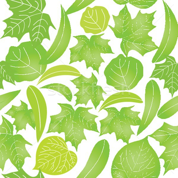 Seamless with green leaves on white background Stock photo © mcherevan