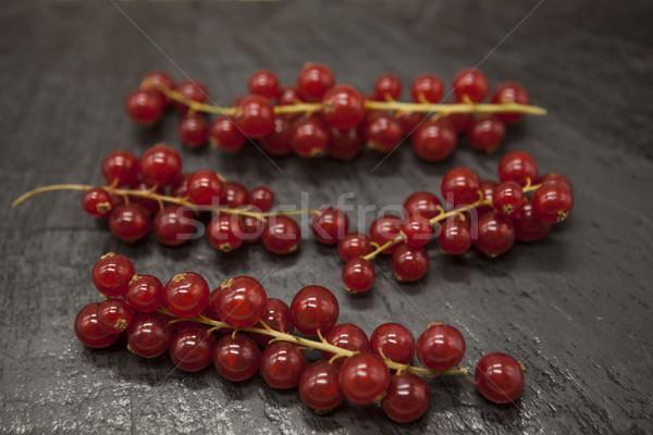 Foto stock: Brilhante · suculento · fresco · ramo · vermelho · groselha
