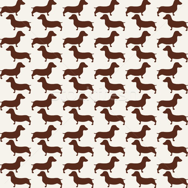 Sevimli küçük köpekler siluet Stok fotoğraf © mcherevan