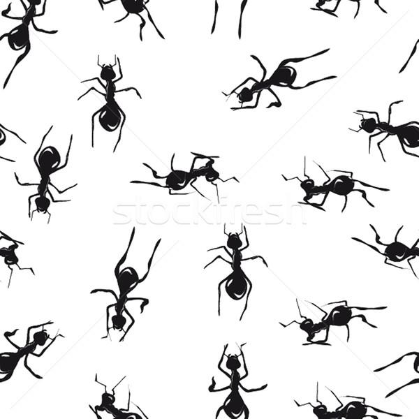 Bonitinho muitos marrom formigas textura Foto stock © mcherevan