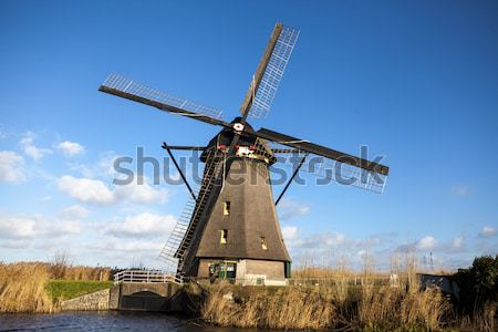 Holland windmill. Old mill chalk and flour . The beautiful backdrop of the countryside of Holland. Stock photo © mcherevan