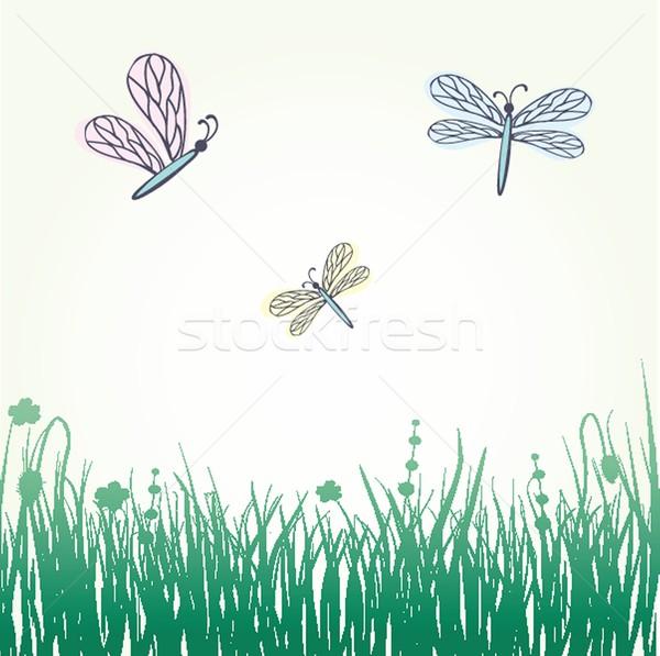 Libélula estilizado flores primavera natureza jardim Foto stock © mcherevan