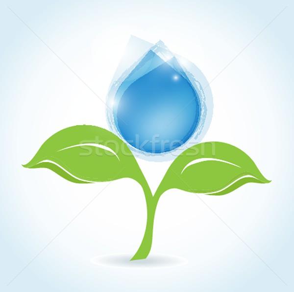 Water drop vector Stock photo © mcherevan