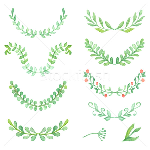 Watercolor painted laurels set. Floral wreaths and plants. Stock photo © mcherevan