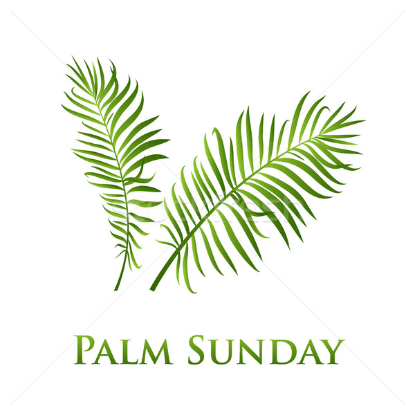 Palm leafs vector icon. Vector illustration  for the Christian holiday Palm Sunday. Stock photo © mcherevan